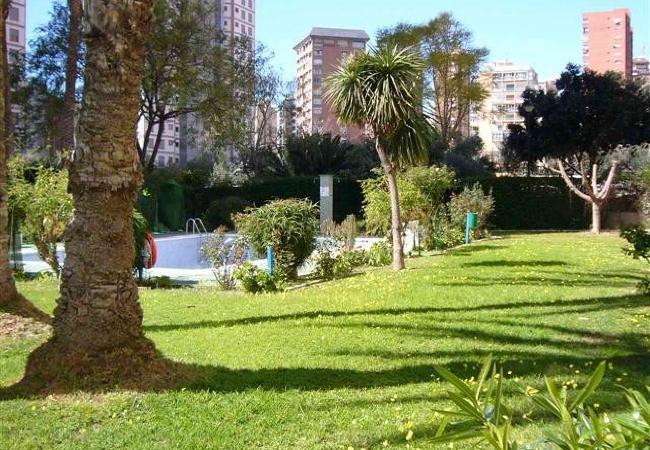 Apartamento en Benidorm - ALHAMBRA (1 DORMITORIO) playa de Levante Benidorm