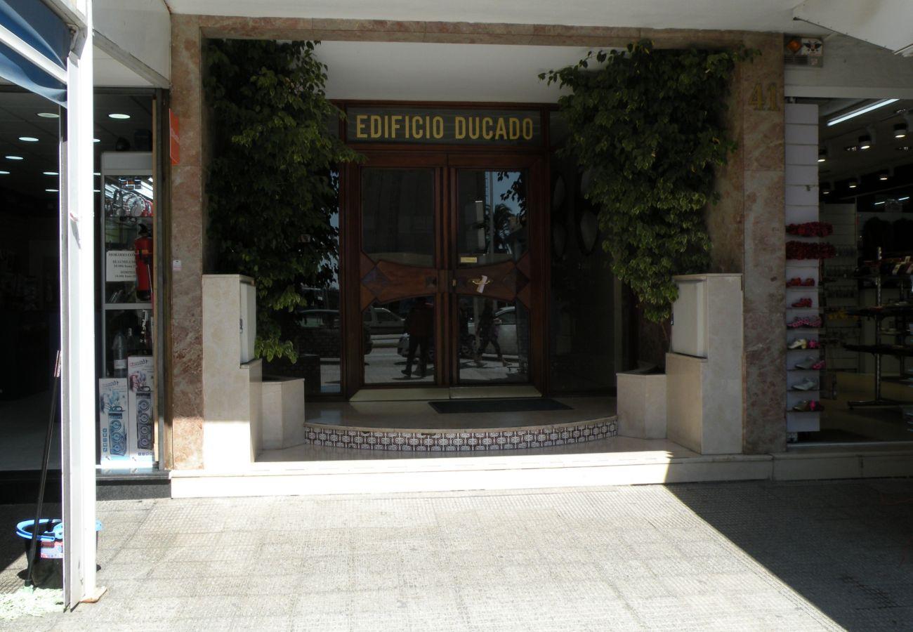 Estudio en Benidorm - DUCADO (ESTUDIO) BENIDORM