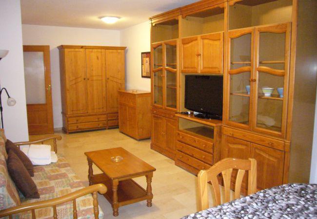 Apartamento en Benidorm - KENNEDY 2 (2 DORMITORIOS)-2-dormitorios