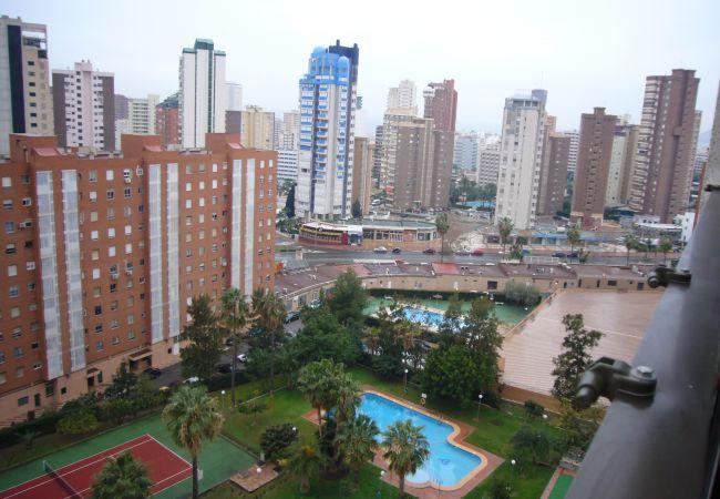 Apartamento en Benidorm - GEMELOS 12 (1 DORMITORIO)-1-dormitorios