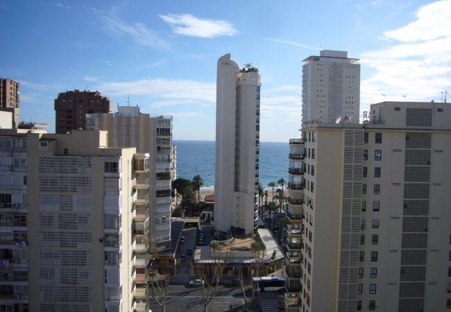Apartamento en Benidorm - LOS PINOS (1 DORMITORIO)-1-dormitorios