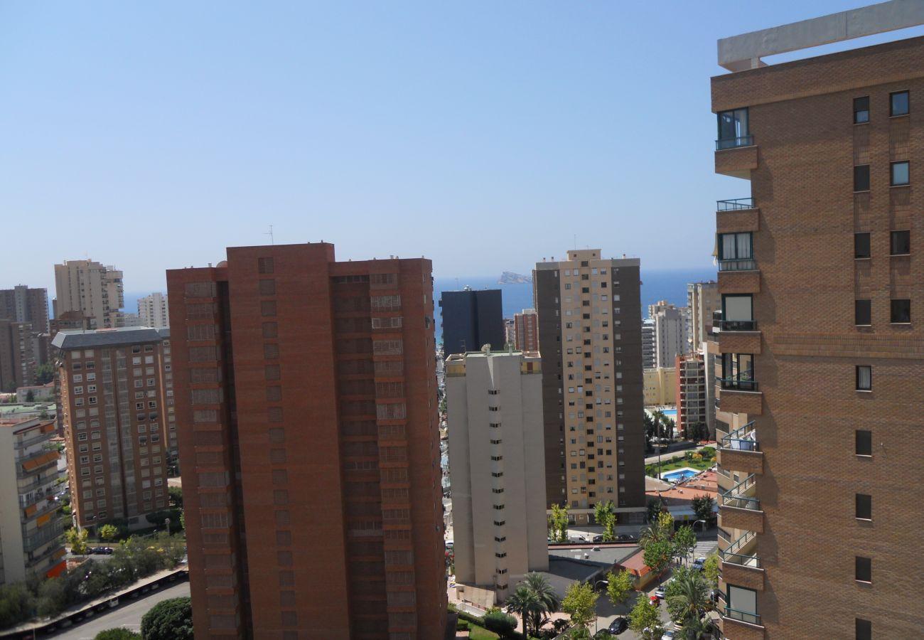 Apartamento en Benidorm - Apartamentos San Francisco (1 dormitorio)