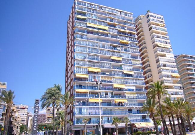 Apartamento en Benidorm - LAS PALMERAS (2 DORMITORIOS)-2-dormitorios
