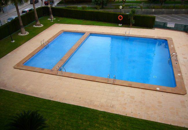 Apartamento en Benidorm - PARAISO ESPERANTO (1 DORMITORIO)-1-dormitorios