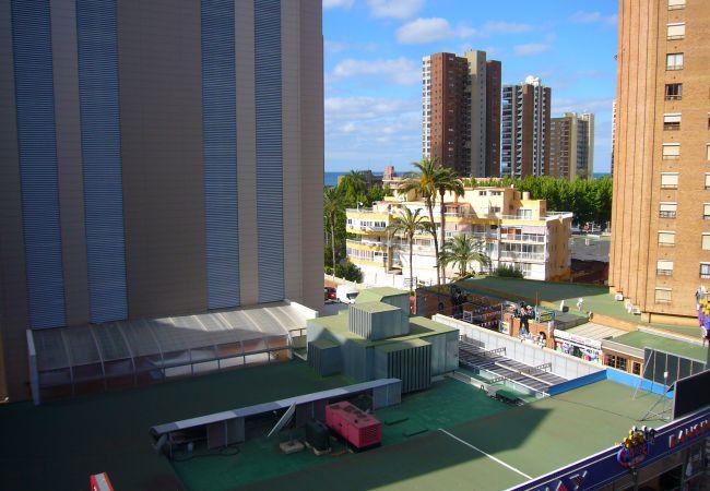Apartamento en Benidorm - OCEAN 3 (2 DORMITORIOS)-2-dormitorios