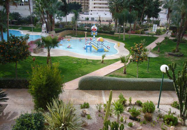 Apartamento en Benidorm - GEMELOS 22 (1 DORMITORIO)-1-Dormitorios