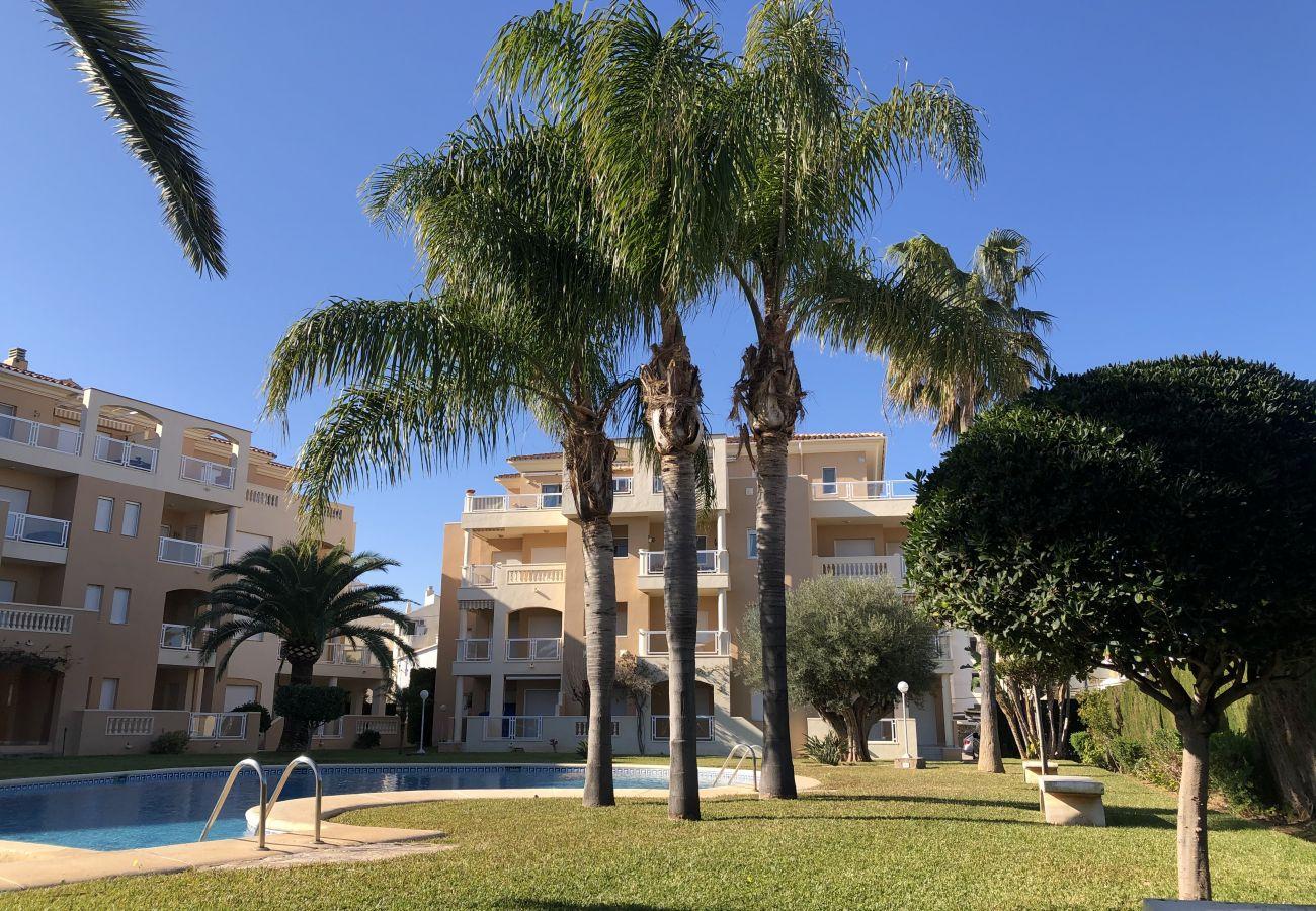 Apartamento en Denia - Amplio apartamento en urbanizacion con piscina y parking