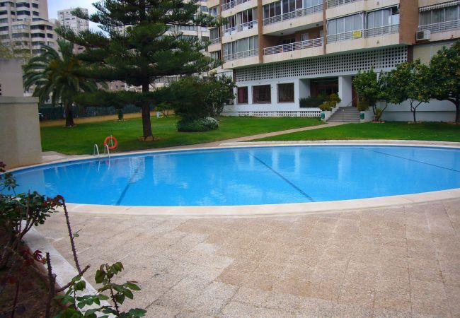 Apartamento en Benidorm - LA NIÑA (1 DORMITORIO)