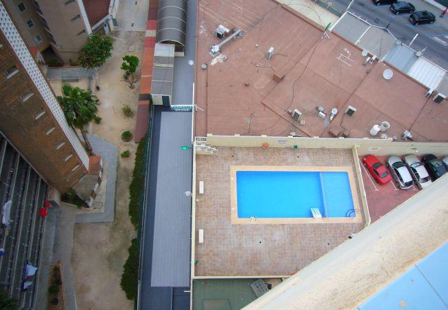 Apartamento en Benidorm - ZEUS (1 DORMITORIO)