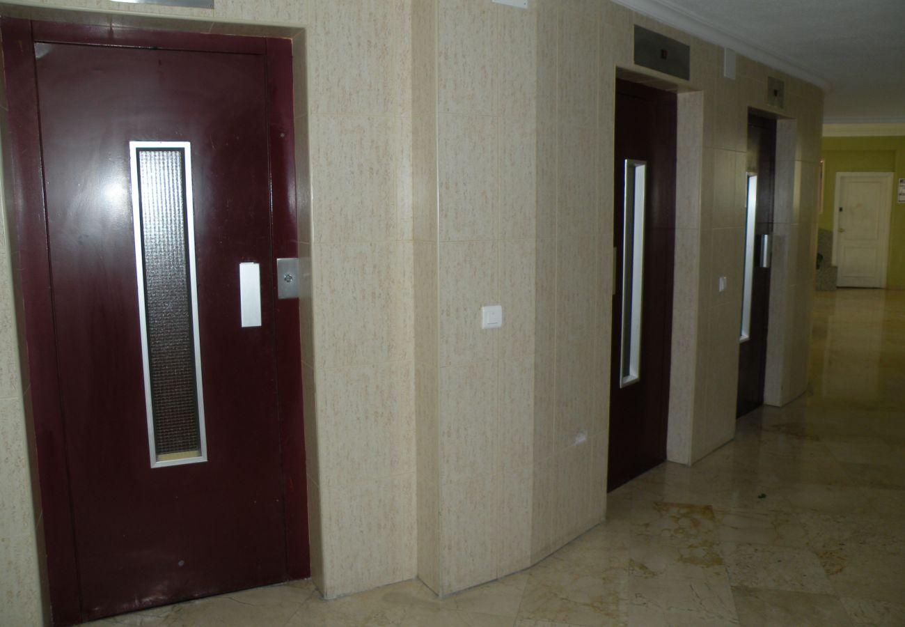 Apartamento en Benidorm - KAROLA (1 DORMITORIO) BENIDORM