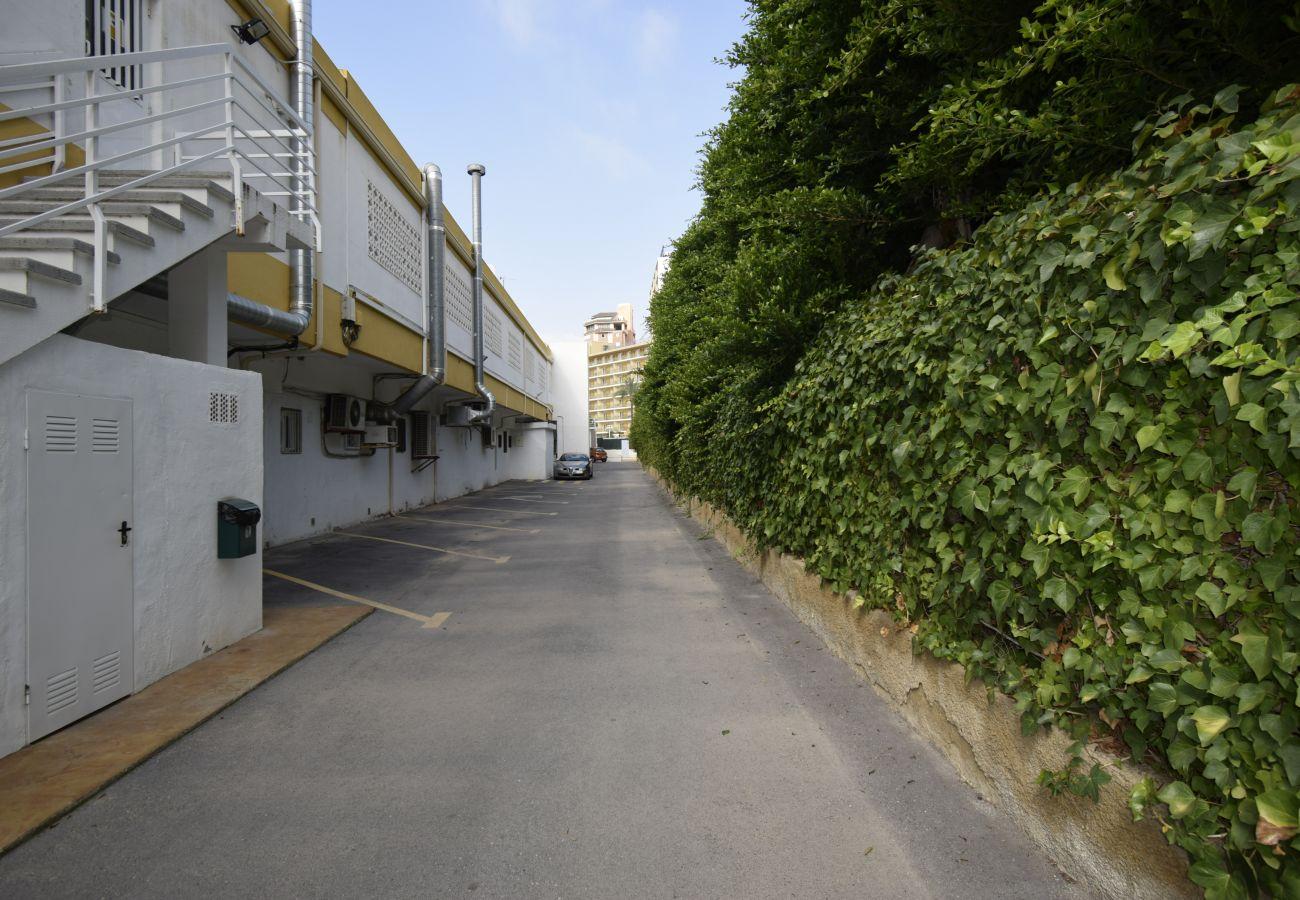 Apartamento en Benidorm - COMERCIAL LEPANTO (1 DORMITORIO)